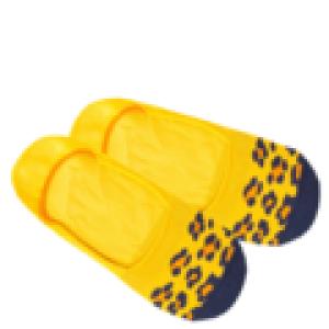 Hidden Cheetah logo